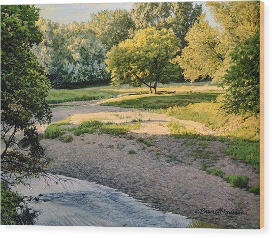 Summer Evening Along The Creek Wood Print