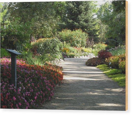 Summer Garden Path Wood Print