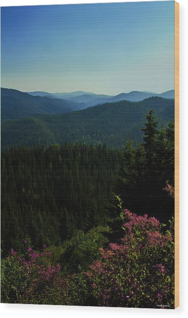 Summer In The Mountains Wood Print