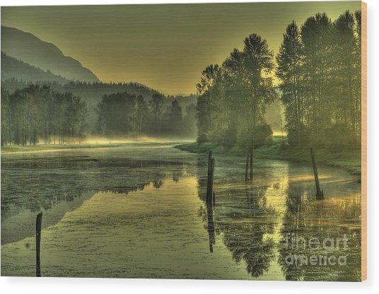 Summer Morning Wood Print
