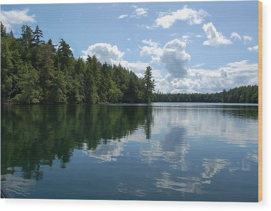 Summer Paddle Wood Print