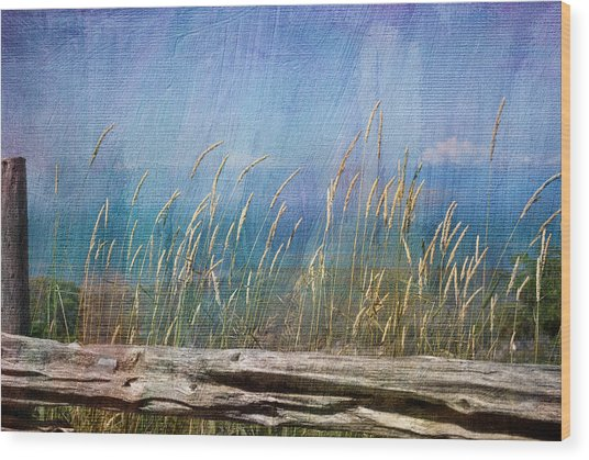 Summer Rendezvous Wood Print