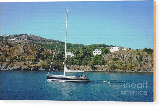 Summer Sailing Wood Print by Therese Alcorn