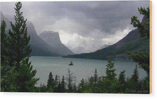 Summer Storm Over Wild Goose Island Wood Print by Lani PVG   Richmond