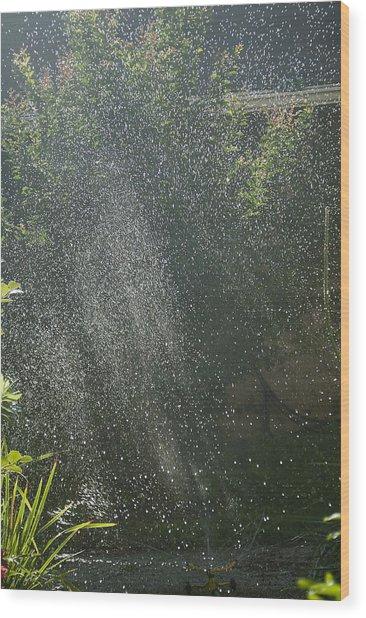 Summer Sun Rays Wood Print