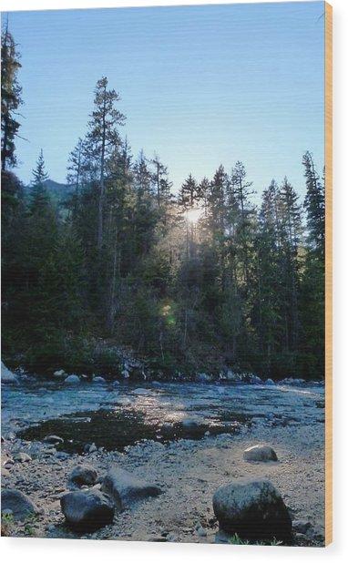 Summer Sunwink Wood Print by Christine Burdine