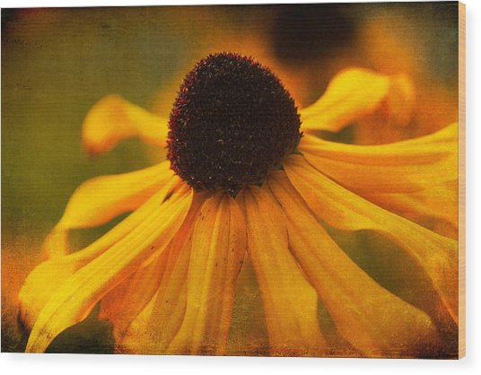 Summers Bloom Wood Print