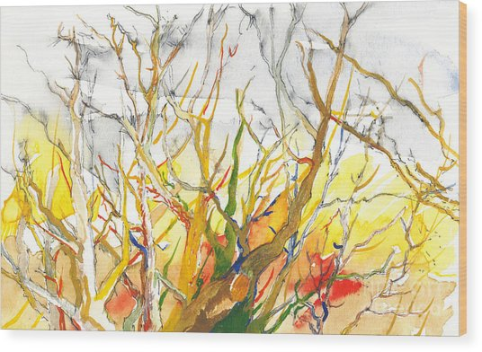 Summer's End Wood Print by Vannucci Fine Art