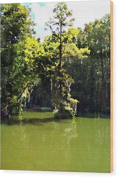 Summertime At Green Field Lake Wood Print