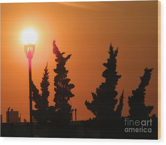 Sun Post Wood Print by Laurence Oliver