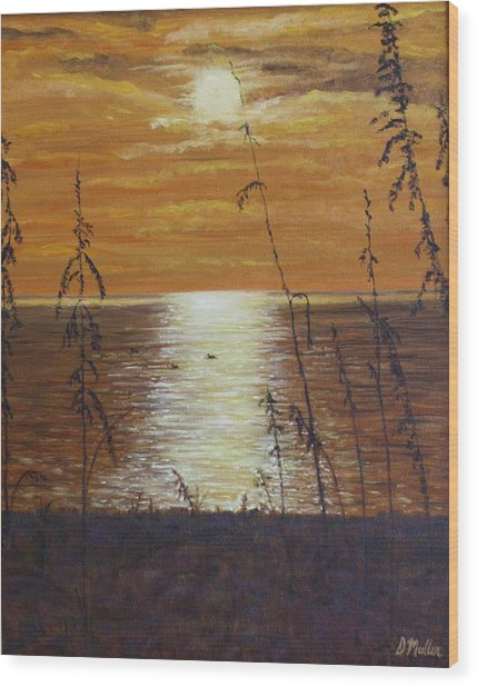 Sun Setting In Florida Wood Print by Donna Muller