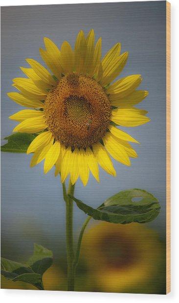 Sunflower Bow Wood Print