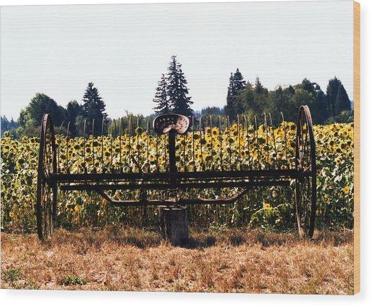 Sunflower Farm Scene Wood Print