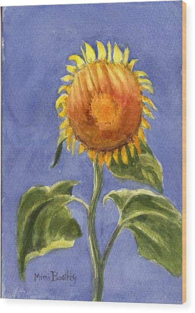Sunflower Glowing In The Sun Wood Print