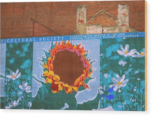 Sunflower In Phili Wood Print by JAMART Photography