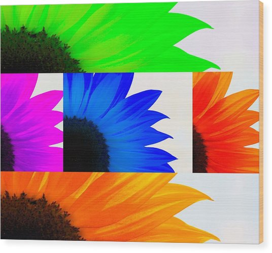 Sunflower Interrupted Wood Print