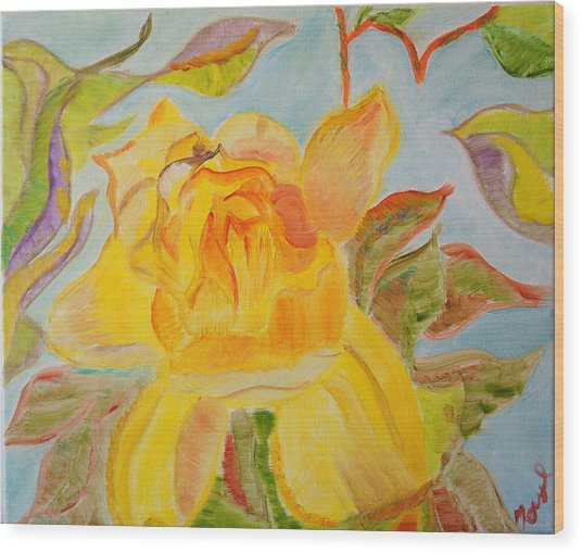 Sunlit Rose Wood Print by Meryl Goudey