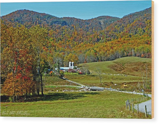 Sunny Day At The Blue Ridge Parkway Wood Print