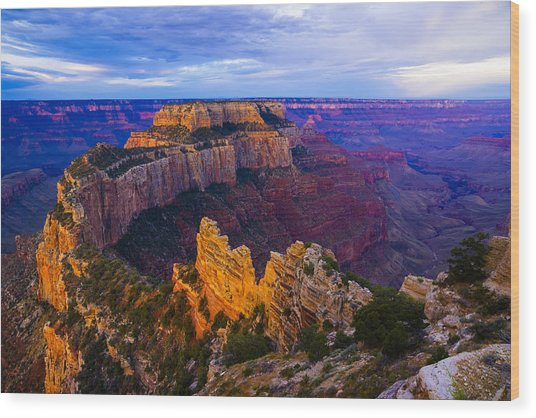 Sunrise At Cape Royal Grand Canyon Wood Print by John Reckleff