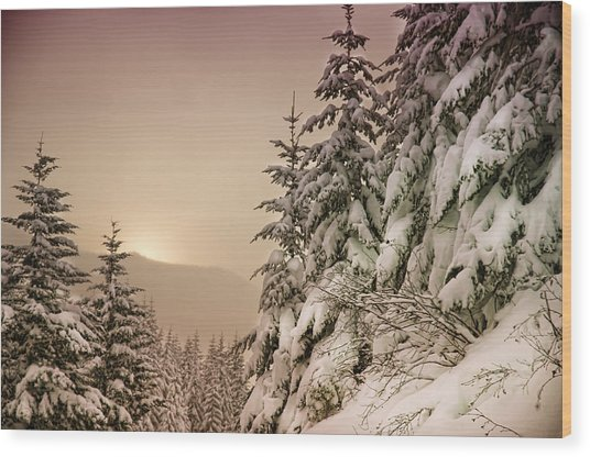 Sunrise At Mt Rainier Wood Print by Nichon Thorstrom