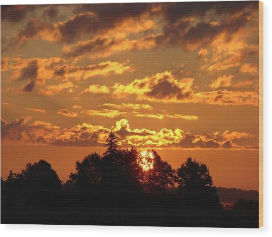 Sunrise At Ravenswood Wood Print