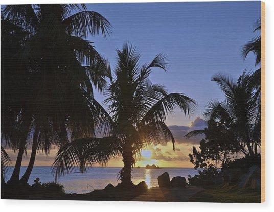 Sunrise In Paradise Wood Print by Nancy Rohrig
