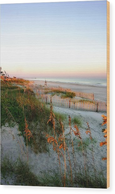 Sunrise On Sea Oats -2 Wood Print by Alan Hausenflock