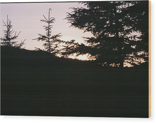 Sunrise Over Mt Still Wood Print by C E McConnell