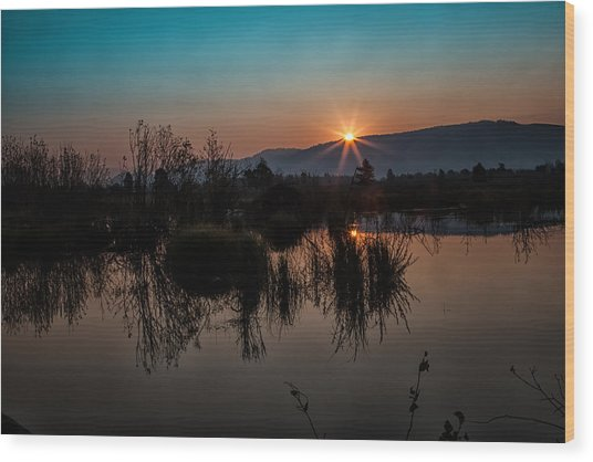 Sunrise Over The Beaver Pond Wood Print