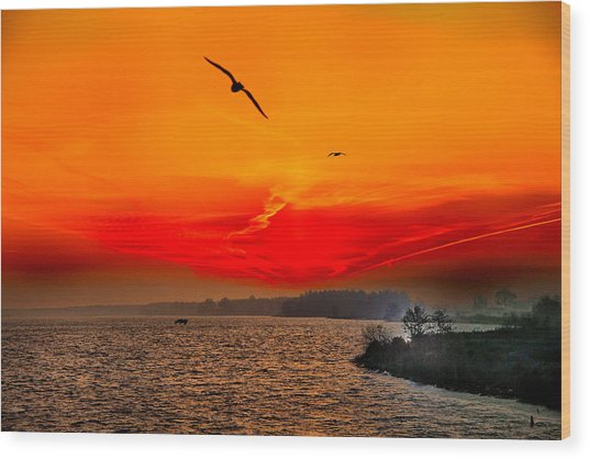 Sunrise Willhelm Stadt Wood Print