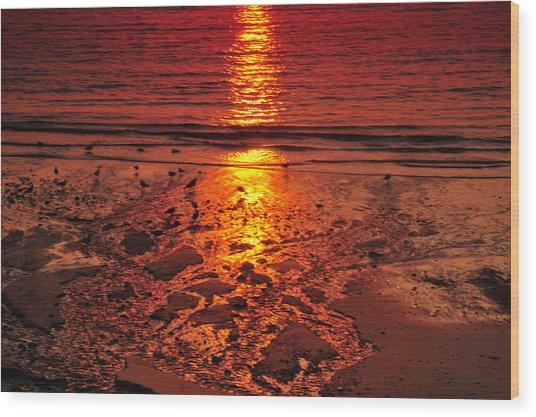 Sunset 4 Wood Print by Jenny Potter