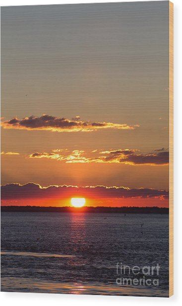 Sunset At Indian River 3 Wood Print