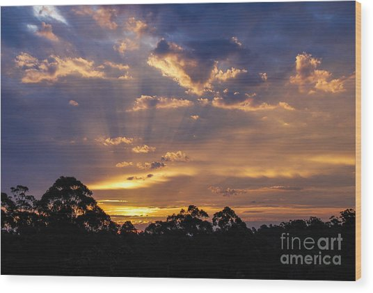 Sunset Lightstreams 1 Wood Print