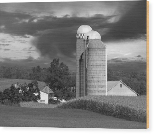 Sunset On The Farm Bw Wood Print