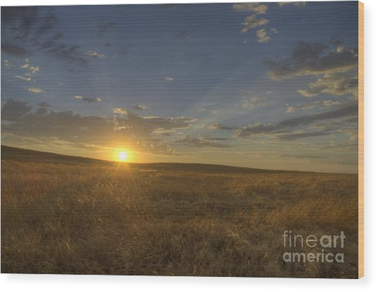 Sunset On The Prairie Wood Print