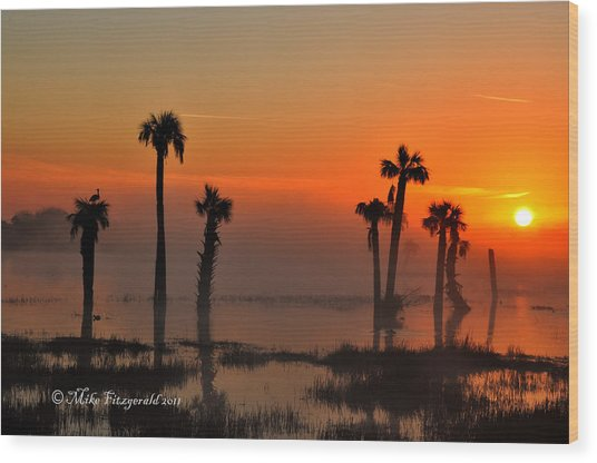 Sunset On Viera Wetlands Wood Print