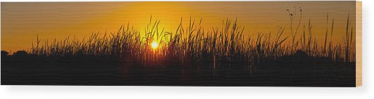 Sunset Over The Prairie Wood Print