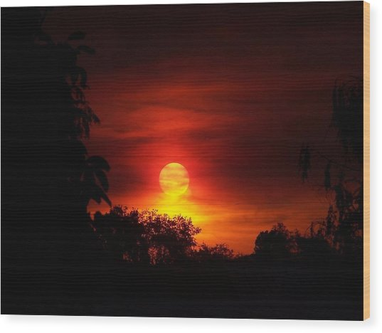 Sunset Wood Print by Richard Adams