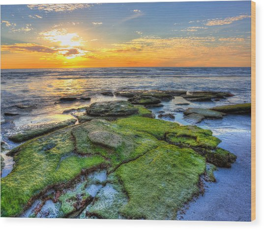 Sunset Siesta Key Rocks Wood Print by Jenny Ellen Photography