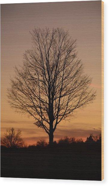 Sunset Silhouette Wood Print