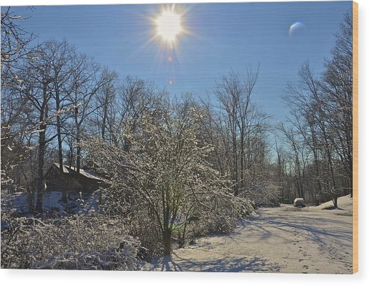 Sunshine In The Snow Wood Print by Nancy Rohrig
