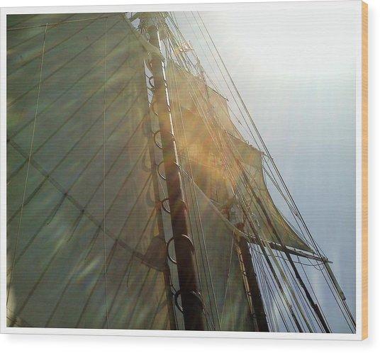 Sunstreaked Wood Print