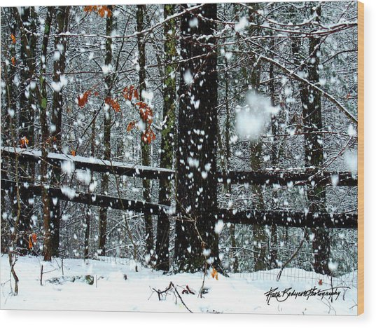 Supersized Snowflakes Wood Print by Ruth Bodycott