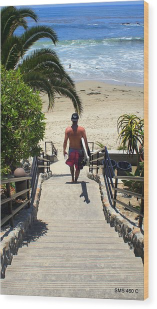 Surfing In Laguna Beach Wood Print
