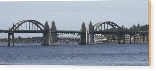 Suslaw Bridge Panorama Wood Print by Mary Gaines