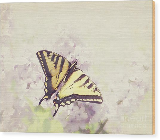 Swallowtail On Lilac Wood Print