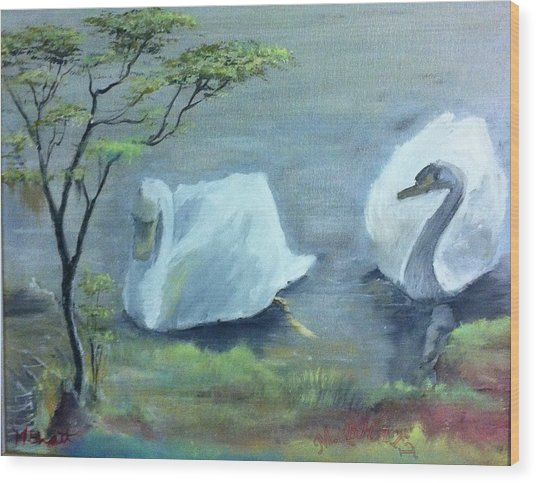 Swan Couple Wood Print by M Bhatt