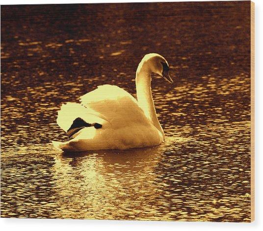 Swan Song 3 Wood Print