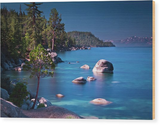 Tahoe On The Rocks Wood Print by Donni Mac