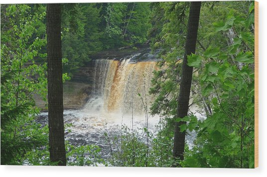 Tahquamenon Falls Of Michigan Wood Print by Michael Carrothers